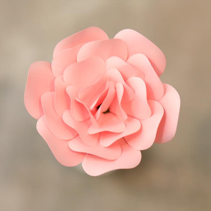 Rose-Quartz ROSE