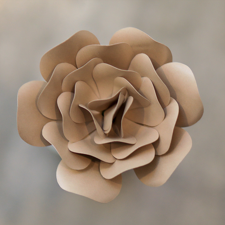 Rose Pearlized Taupe