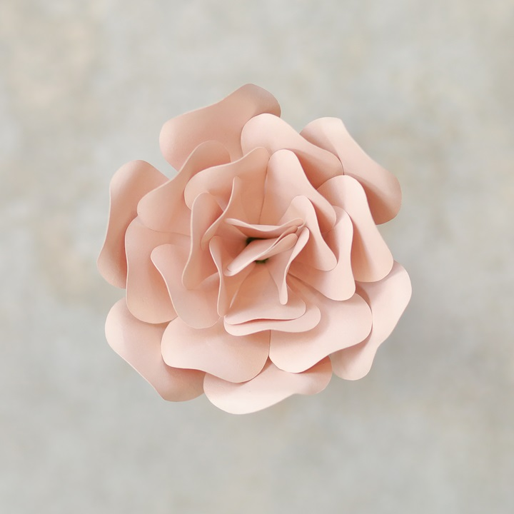 Pearlized Rose Gold - ROSE