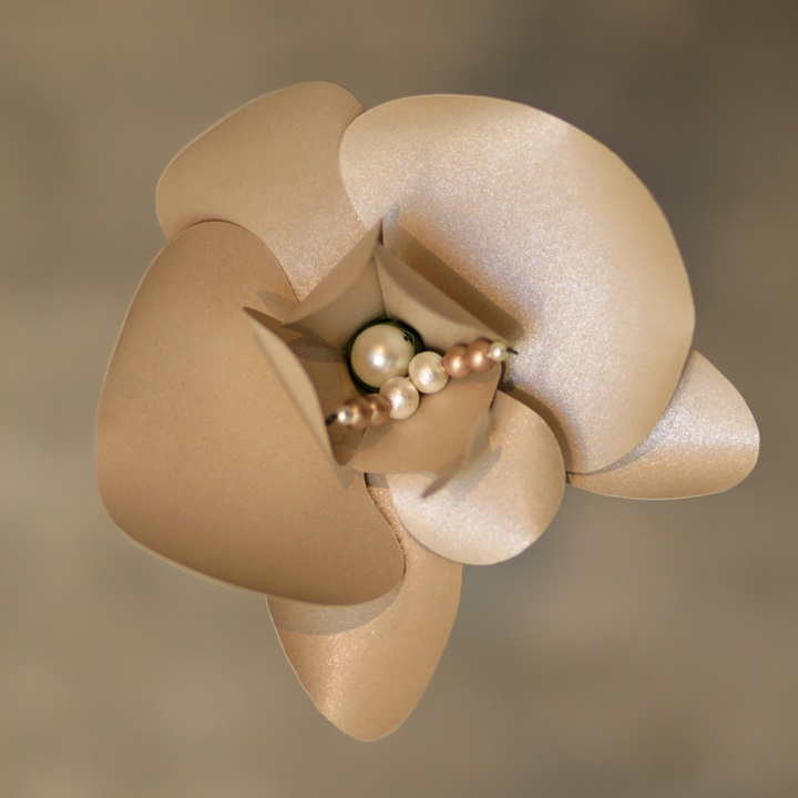 Pearlized Taupe Orchid