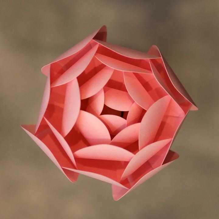 Rose Quartz Peony