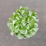Washi Pastel Green Hydrangea