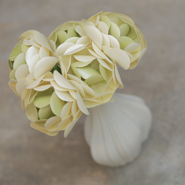 CN PEARLIZED CHAMPAGNE AND PEARLIZED HONEYDEW ranculus